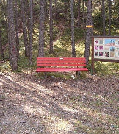 Geoweg Forchet Haiming ©W. Schwarz - Naturpark Ötztal