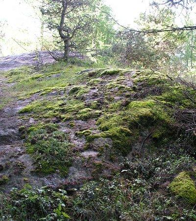 """Archäologische Wanderung Windach """"Schalenstein"""" - Naturpark Ötztal"""