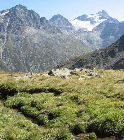 Naturwaldreservat Windachtal - c Anita Hofer